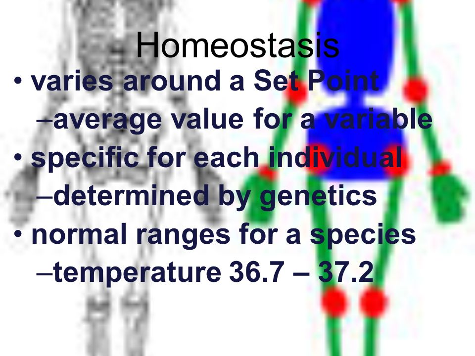 Homeostasis varies around a Set Point average value for a variable