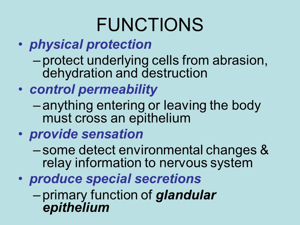 FUNCTIONS physical protection