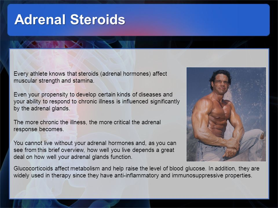 Adrenal Steroids Every athlete knows that steroids (adrenal hormones) affect muscular strength and stamina.