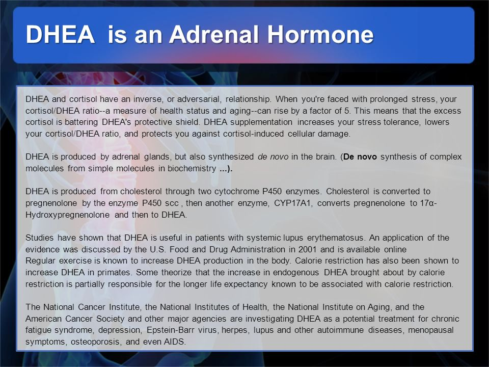 DHEA is an Adrenal Hormone