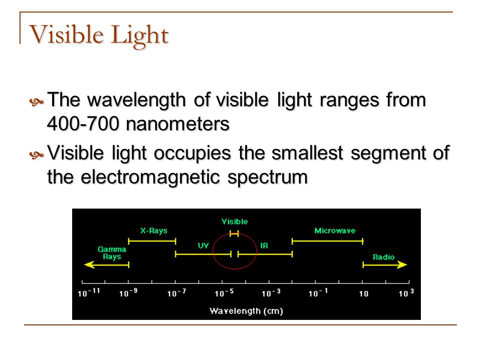 Visible Light The wavelength of visible light ranges from 400-700 nanometers.