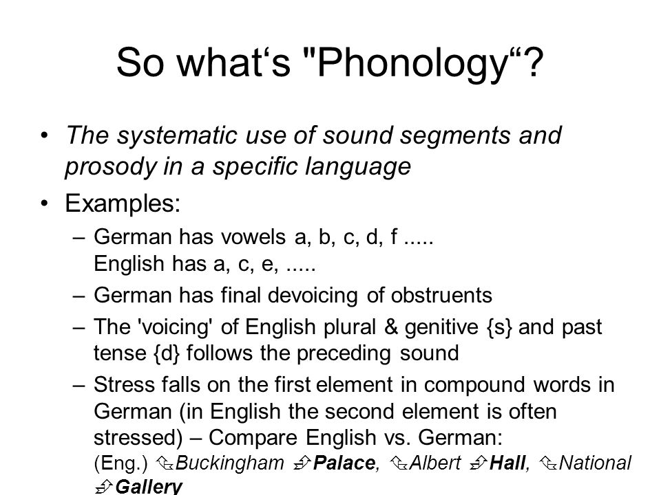 Phonetics Phonology William Barry Ppt Download