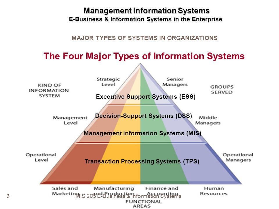 what is executive support system in management information system