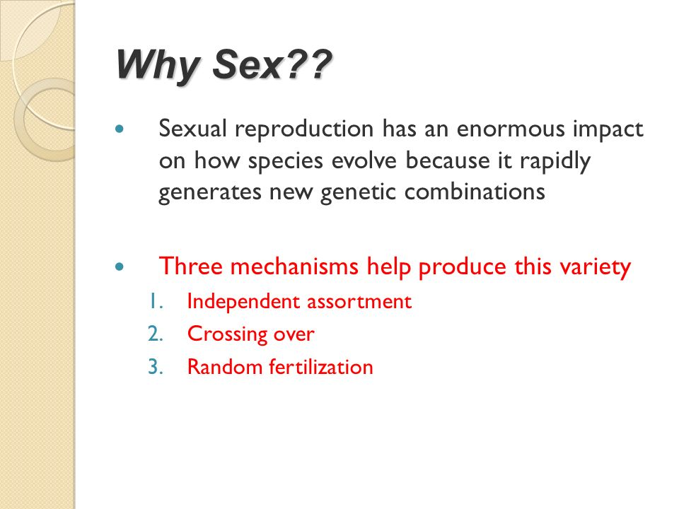 Why Sex Sexual reproduction has an enormous impact on how species evolve because it rapidly generates new genetic combinations.