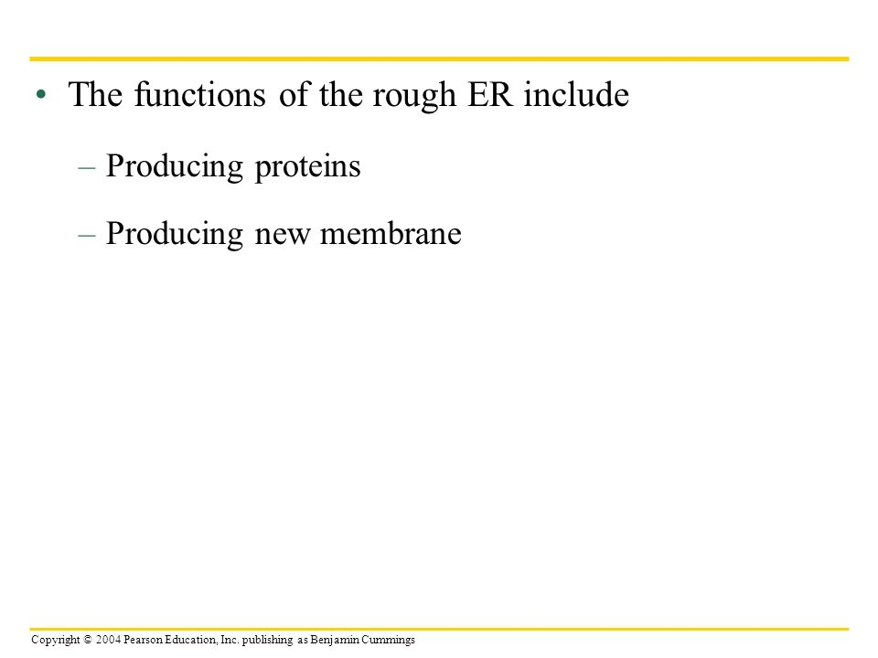 The functions of the rough ER include