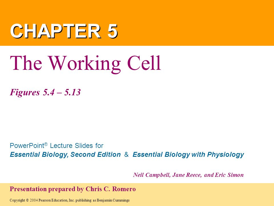 The Working Cell Figures 5.4 – 5.13