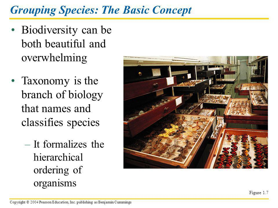 Grouping Species: The Basic Concept