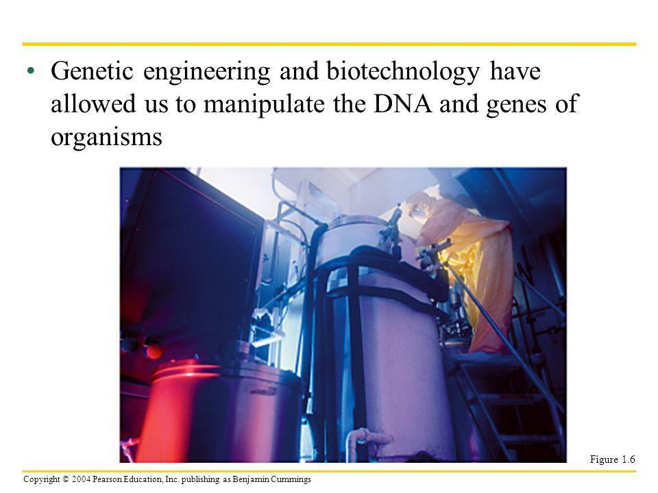 Genetic engineering and biotechnology have allowed us to manipulate the DNA and genes of organisms