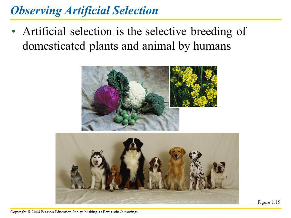 Observing Artificial Selection