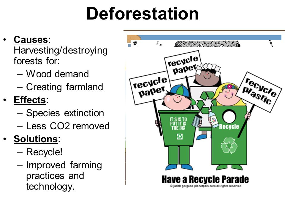 Deforestation Causes: Harvesting/destroying forests for: Wood demand
