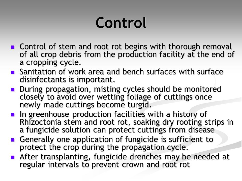 Control Control of stem and root rot begins with thorough removal of all crop debris from the production facility at the end of a cropping cycle.