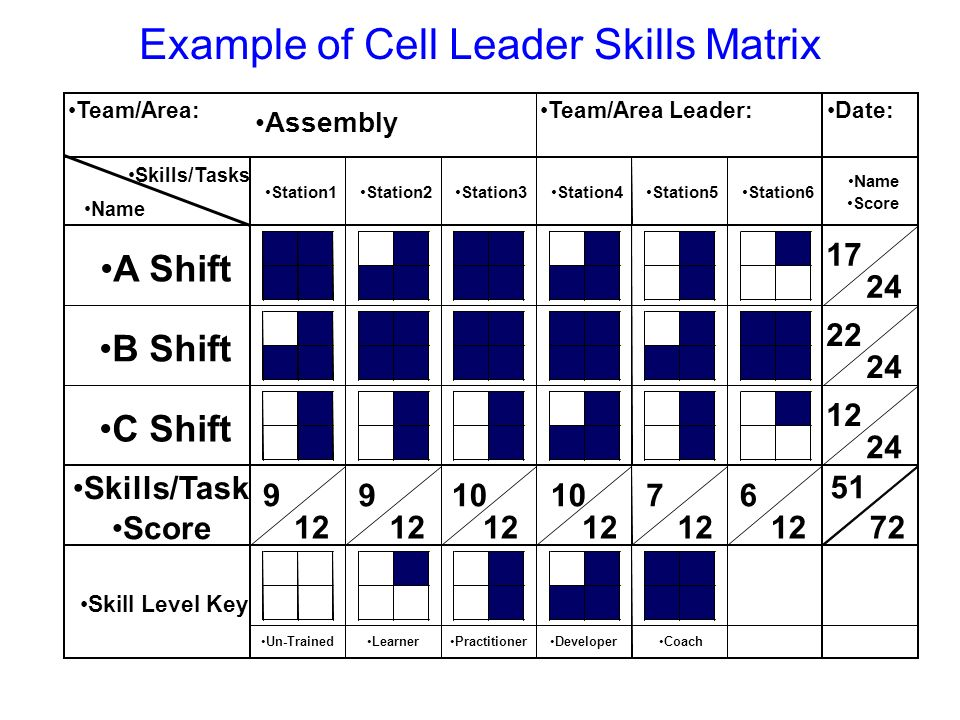 Example of Cell Leader Skills Matrix