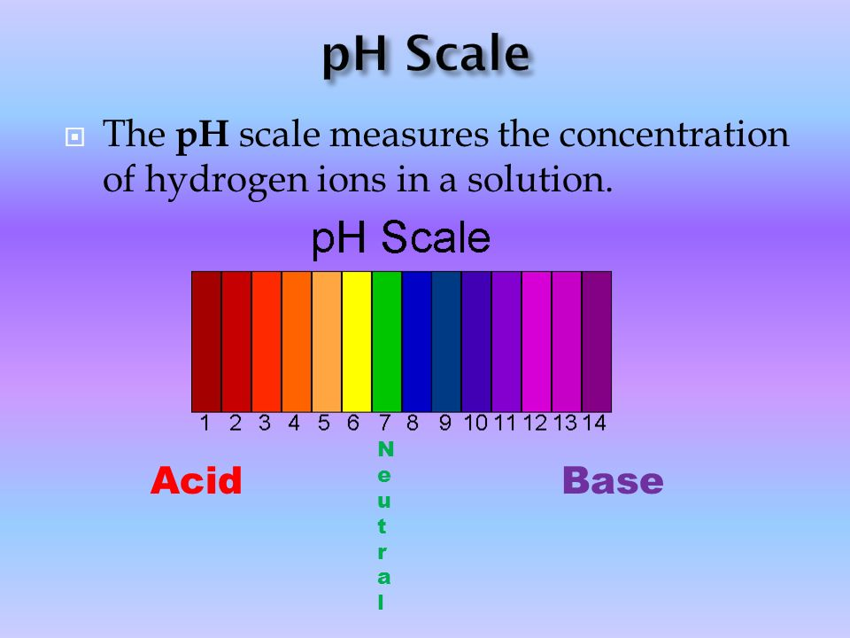 pH Scale The pH scale measures the concentration of hydrogen ions in a solution. Neutral Acid Base