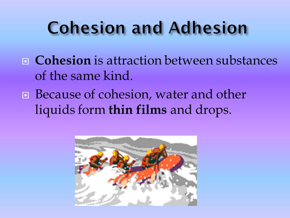 Cohesion and Adhesion Cohesion is attraction between substances of the same kind.