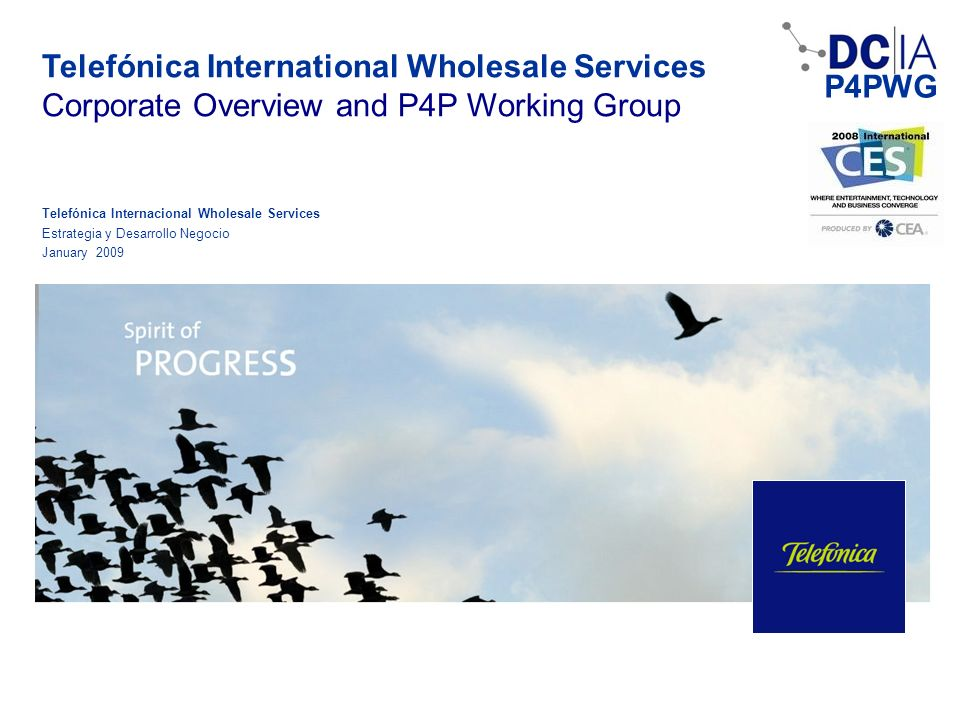 Telefónica International Wholesale Services
