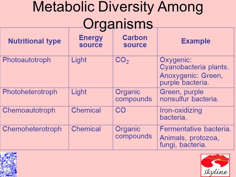 Microbial Metabolism Ch 5