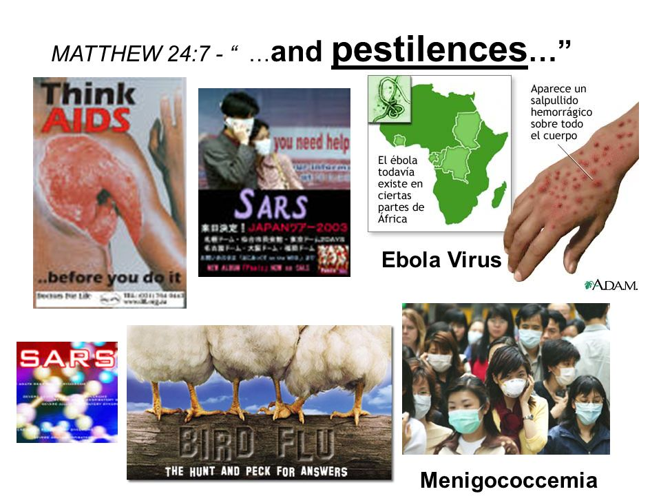 MATTHEW 24:7 - …and pestilences…