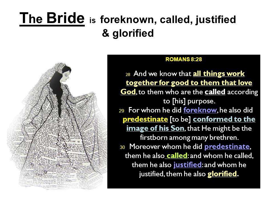 The Bride is foreknown, called, justified & glorified