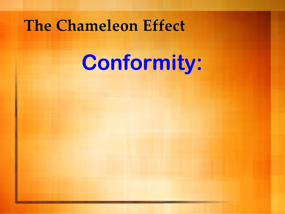 The Chameleon Effect Conformity: