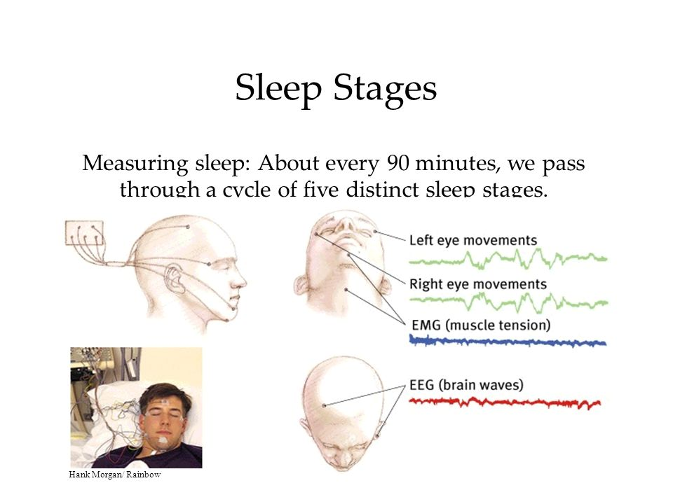 Sleep Stages Measuring sleep: About every 90 minutes, we pass through a cycle of five distinct sleep stages.