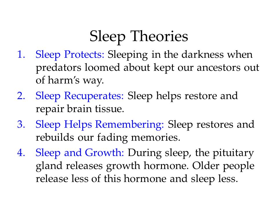 Sleep Theories Sleep Protects: Sleeping in the darkness when predators loomed about kept our ancestors out of harm's way.