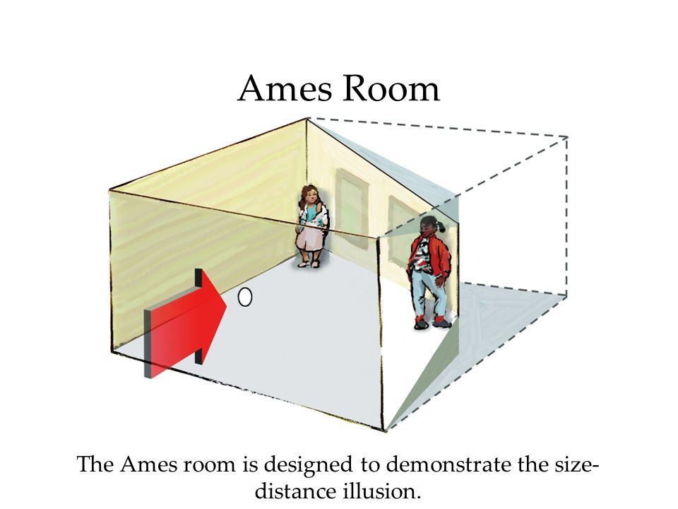 The Ames room is designed to demonstrate the size-distance illusion.