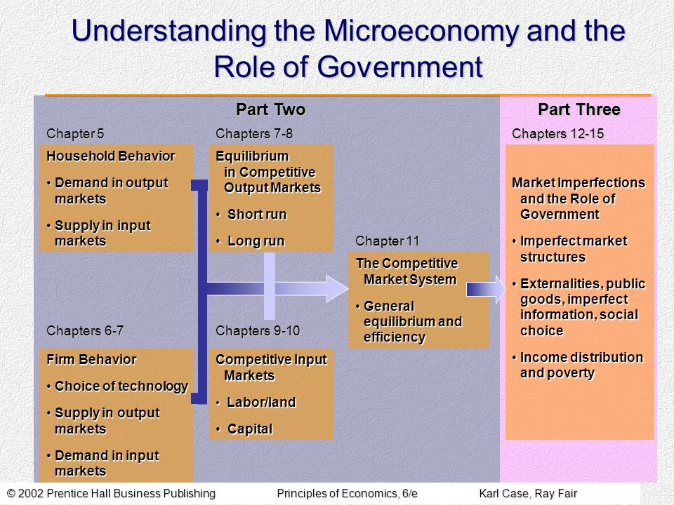 Understanding the Microeconomy and the Role of Government
