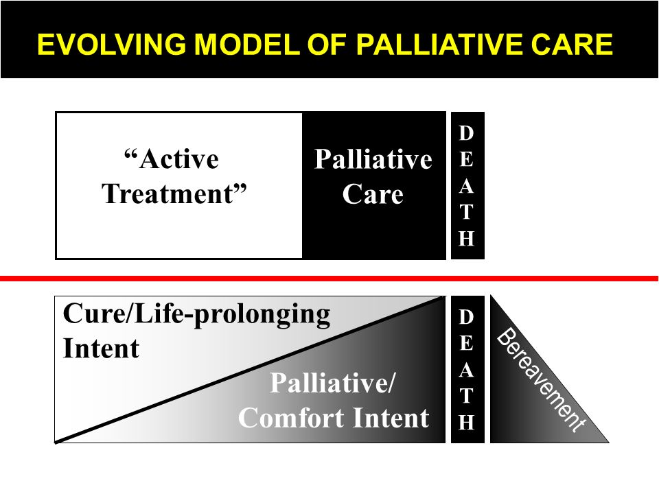 Active Treatment Palliative Care Palliative/ Comfort Intent