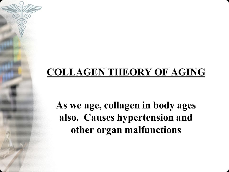 COLLAGEN THEORY OF AGING