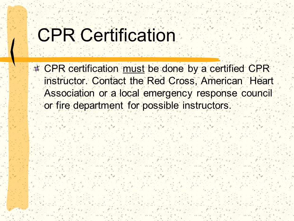 First Aid Ppt Download