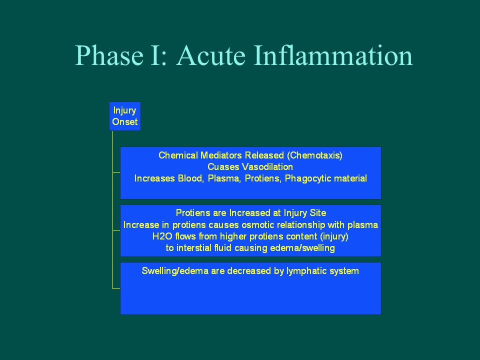 Phase I: Acute Inflammation