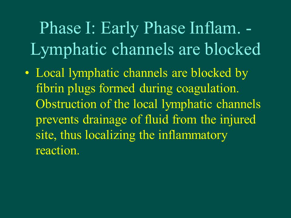 Phase I: Early Phase Inflam. - Lymphatic channels are blocked