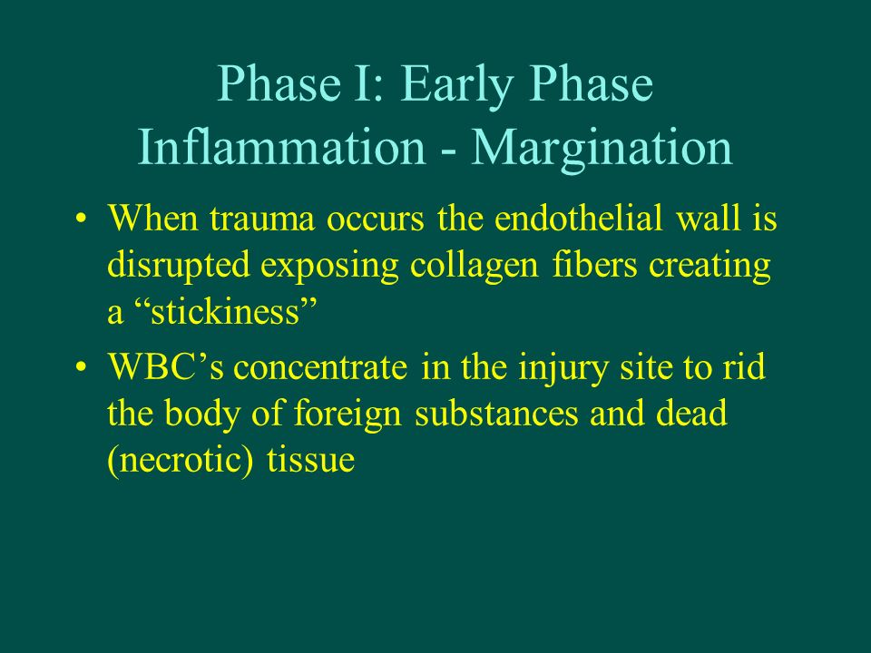 Phase I: Early Phase Inflammation - Margination