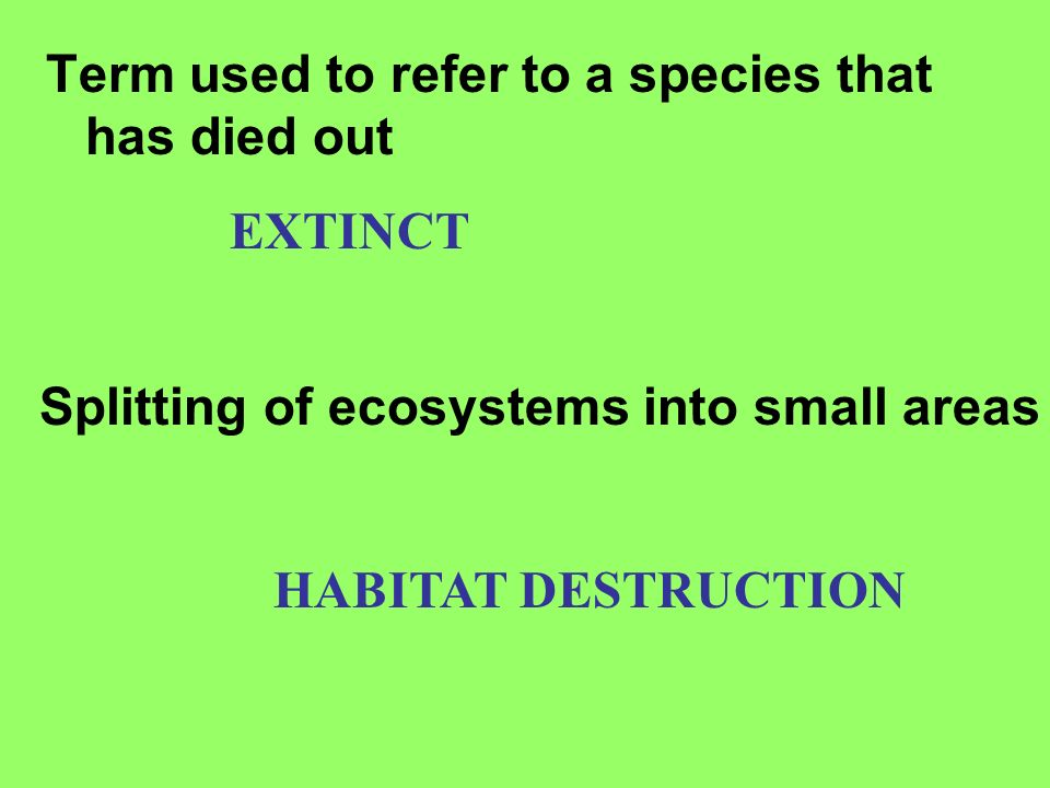 Term used to refer to a species that has died out