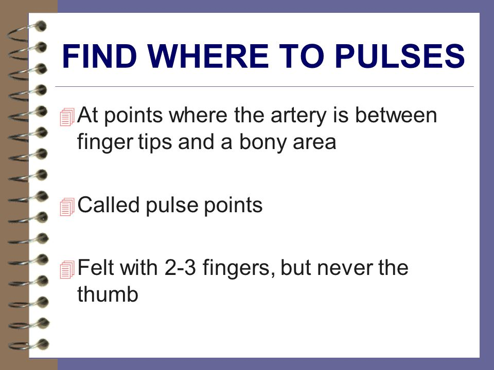 FIND WHERE TO PULSES At points where the artery is between finger tips and a bony area. Called pulse points.