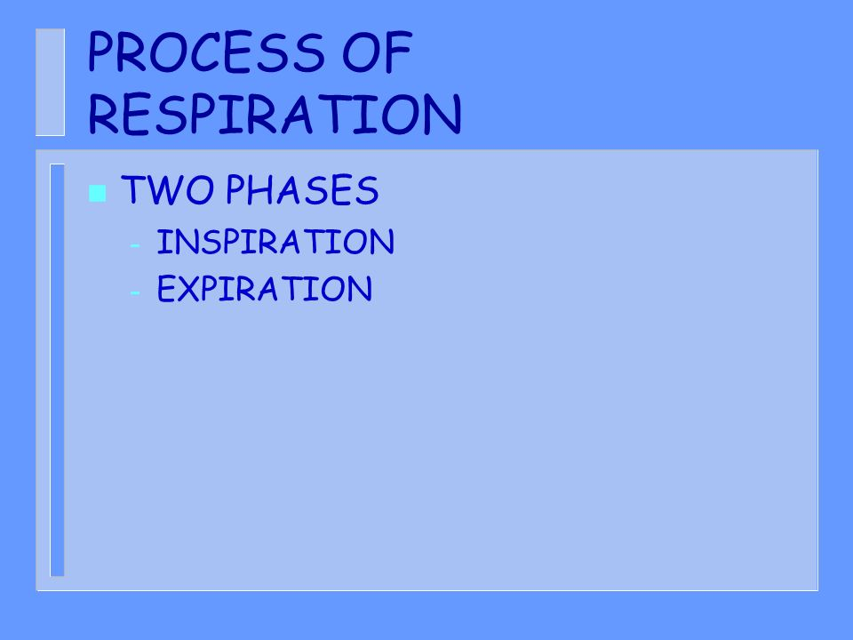 PROCESS OF RESPIRATION