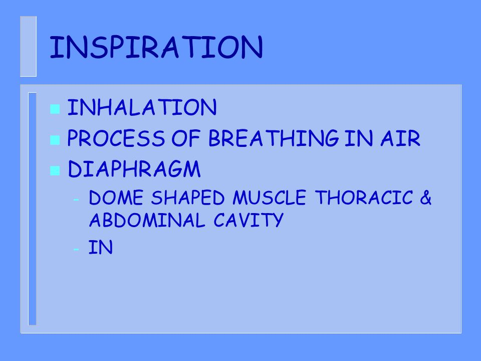 INSPIRATION INHALATION PROCESS OF BREATHING IN AIR DIAPHRAGM