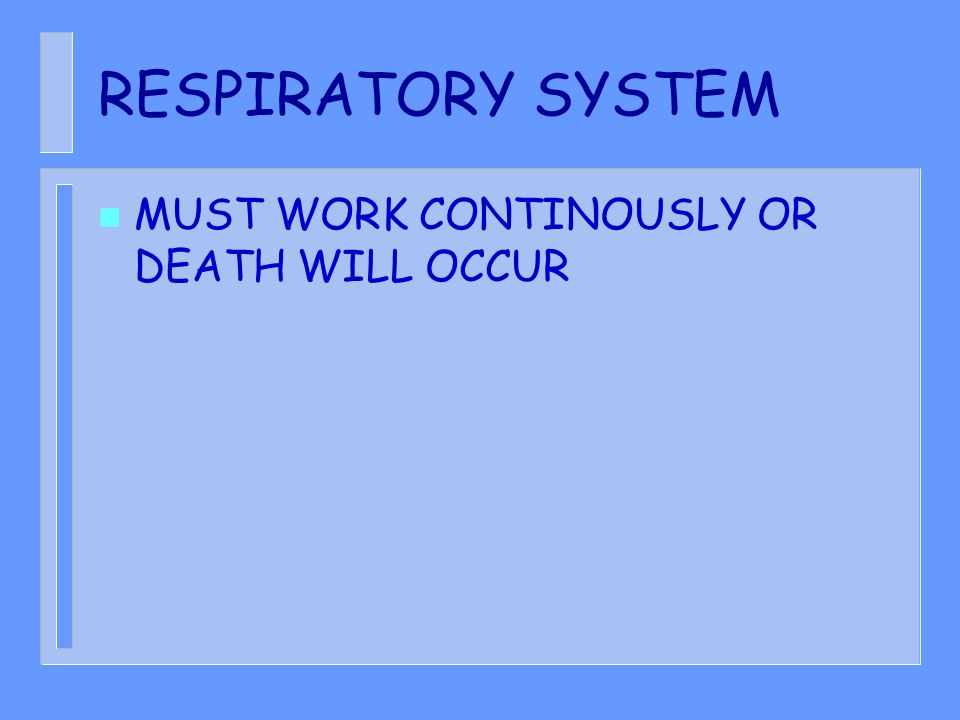 RESPIRATORY SYSTEM MUST WORK CONTINOUSLY OR DEATH WILL OCCUR