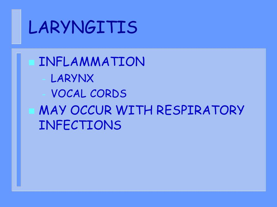 LARYNGITIS INFLAMMATION MAY OCCUR WITH RESPIRATORY INFECTIONS LARYNX