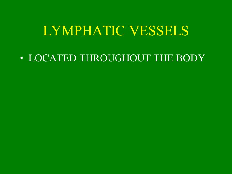 LYMPHATIC VESSELS LOCATED THROUGHOUT THE BODY