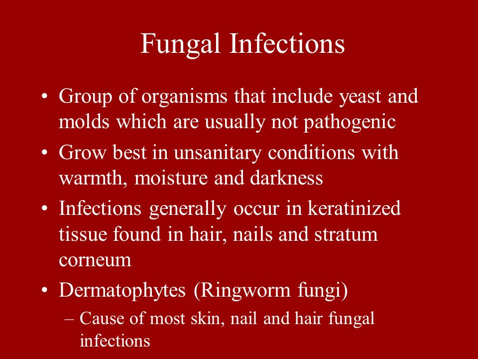 Fungal Infections Group of organisms that include yeast and molds which are usually not pathogenic.