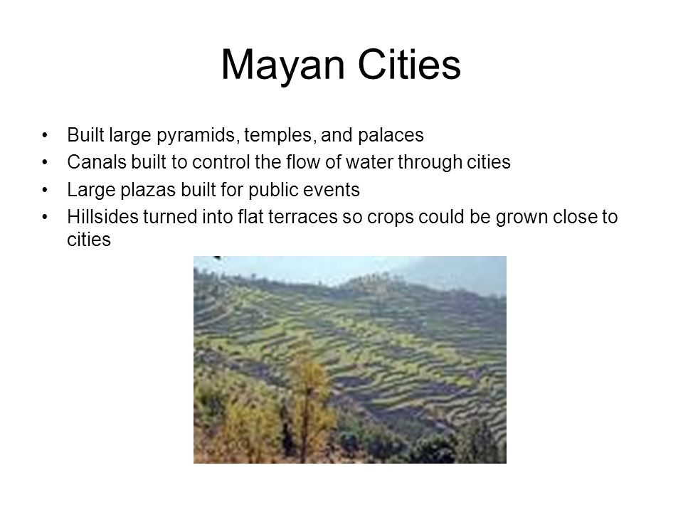 Mayan Cities Built large pyramids, temples, and palaces