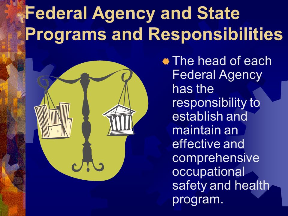 Federal Agency and State Programs and Responsibilities