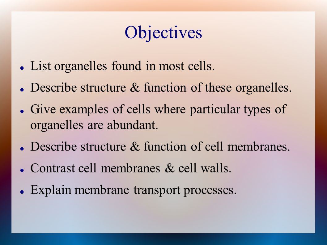 Objectives List organelles found in most cells.