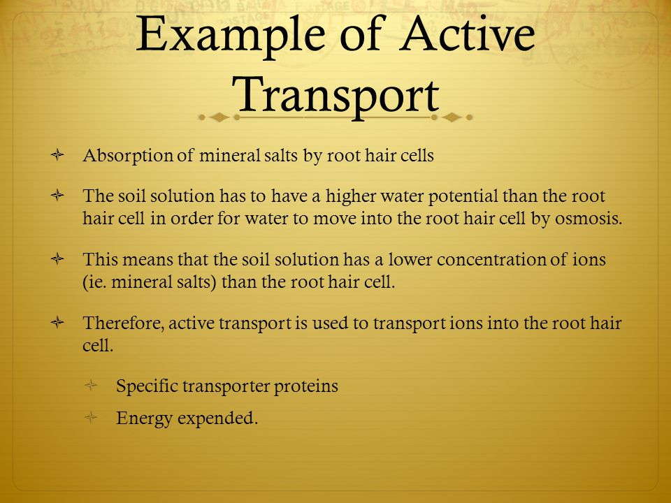 Diffusion Osmosis Active Transport Ppt Video Online Download