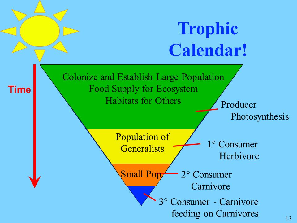 Trophic Calendar! Colonize and Establish Large Population