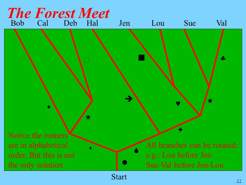 The Forest Meet Bob Cal Deb Hal Jen Lou Sue Val         