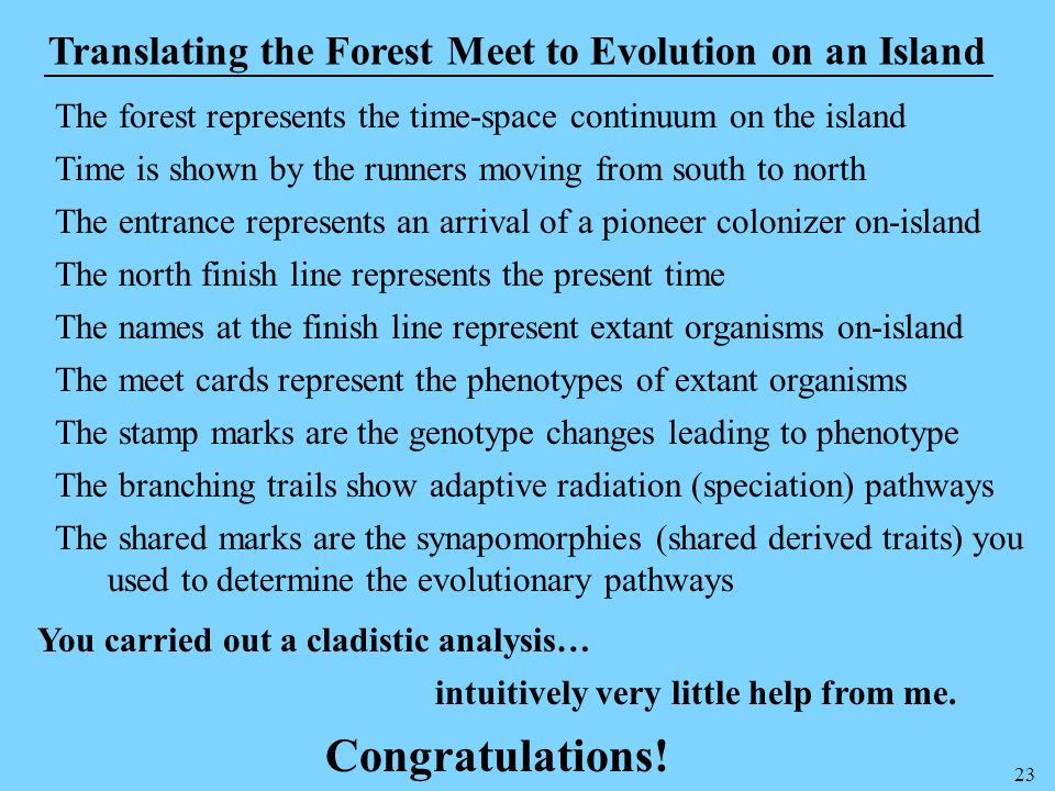Congratulations! Translating the Forest Meet to Evolution on an Island