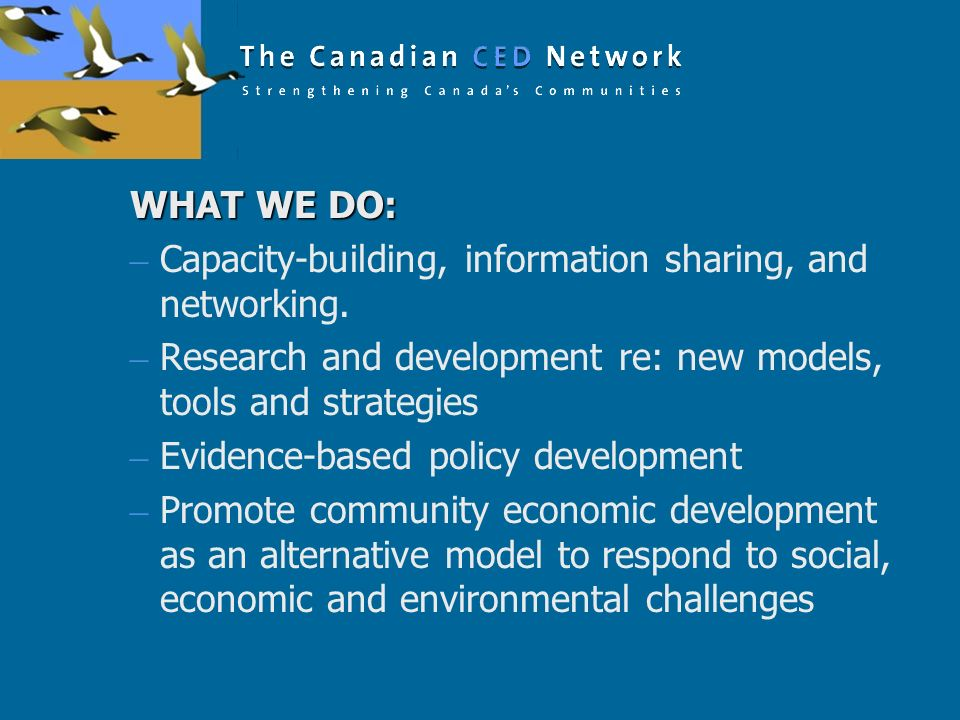 WHAT WE DO: Capacity-building, information sharing, and networking. Research and development re: new models, tools and strategies.
