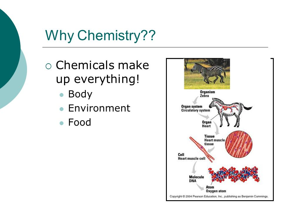 Why Chemistry Chemicals make up everything! Body Environment Food